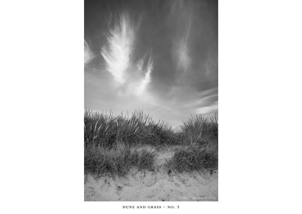 Dunes| Nantucket | Van Lieu Photography 10