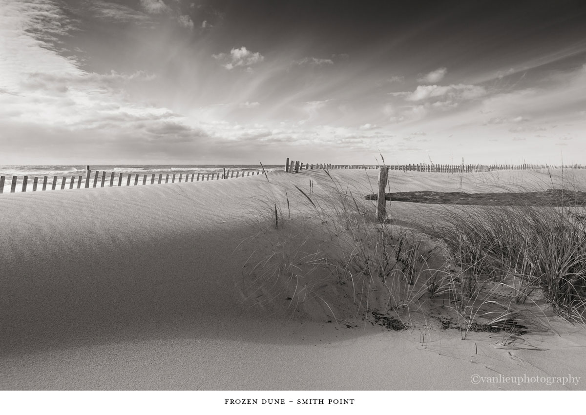 Dunes| Nantucket | Van Lieu Photography  5