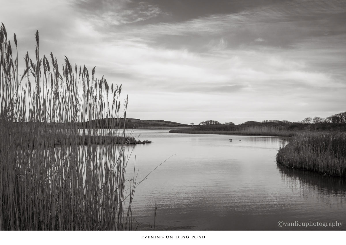 Landscapes | Nantucket | Van Lieu Photography 22