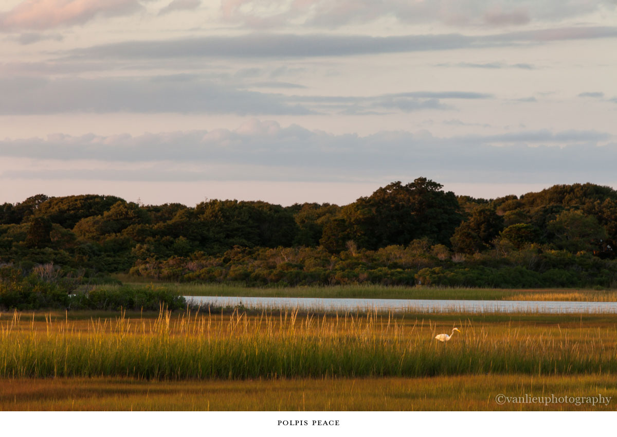 Landscapes | Nantucket | Van Lieu Photography 3