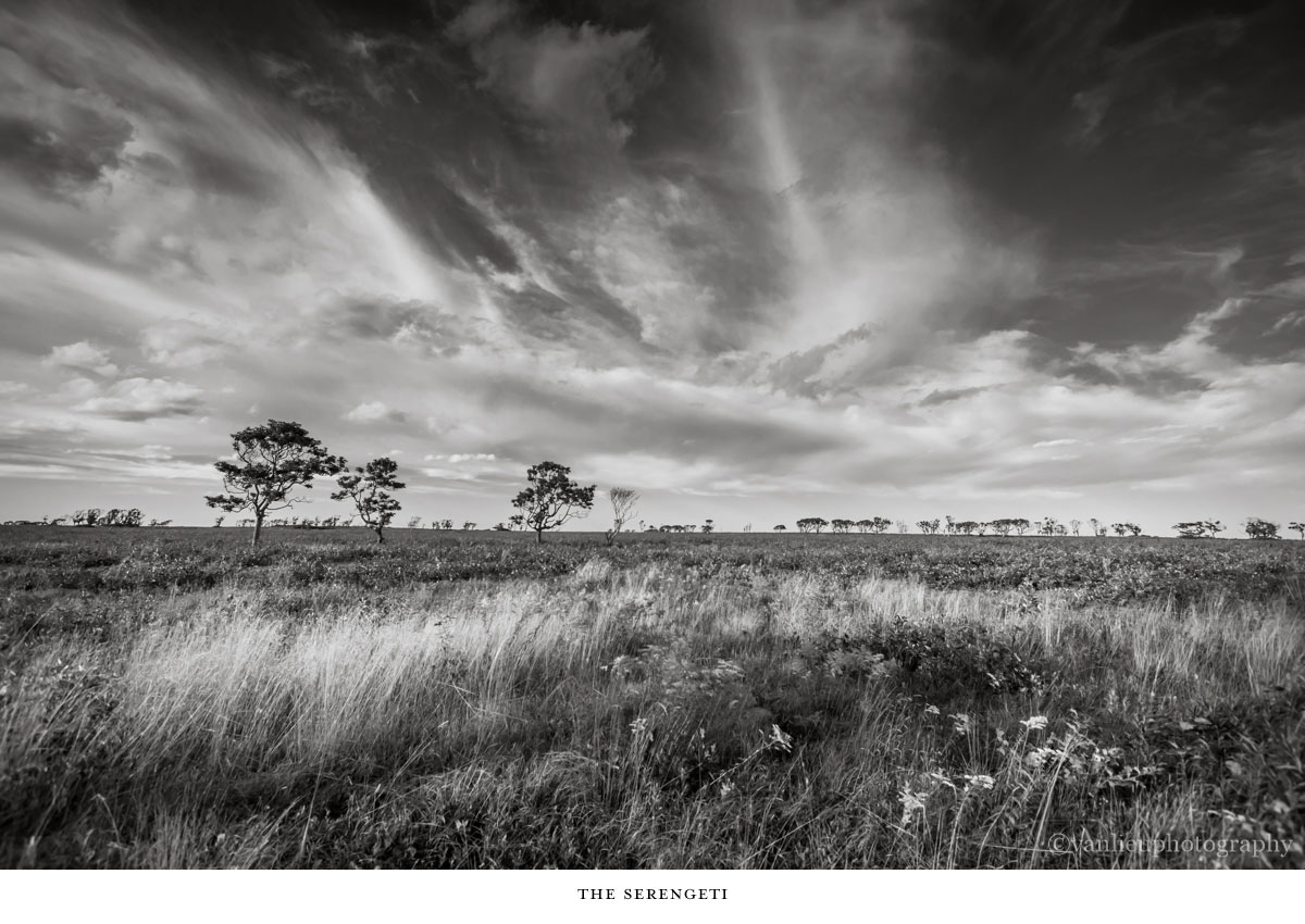 Landscapes | Nantucket | Van Lieu Photography 5