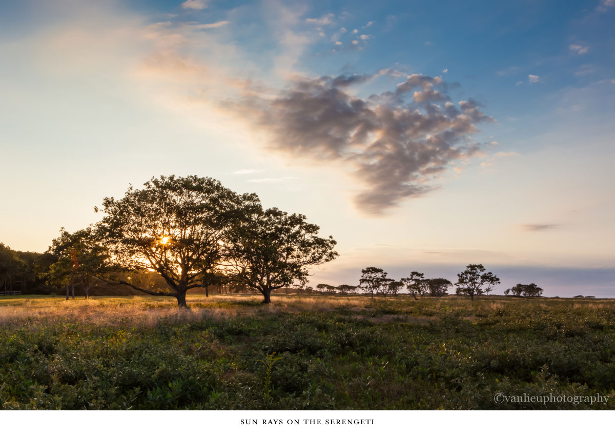 Landscapes | Nantucket | Van Lieu Photography 8