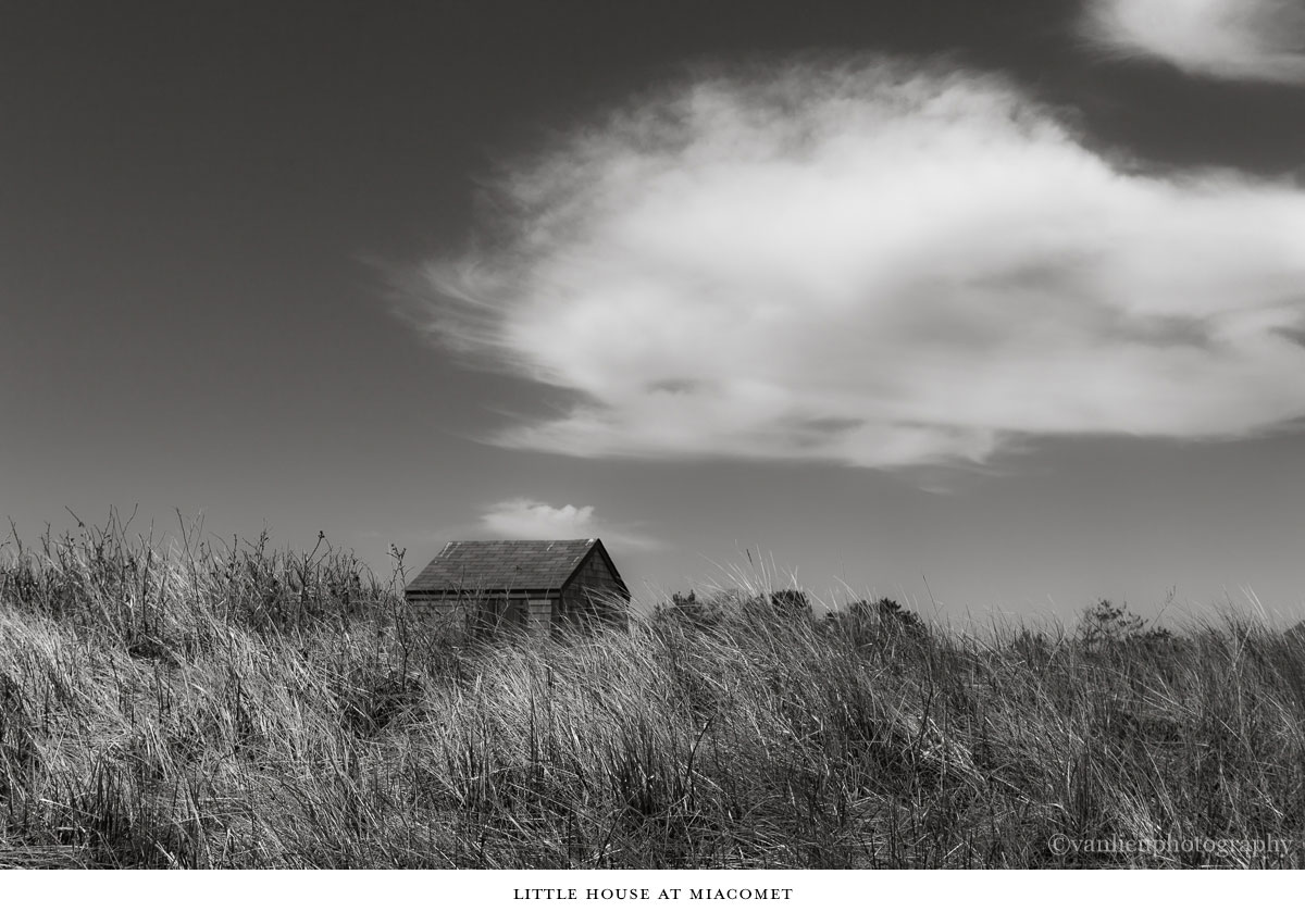 Dunes| Nantucket | Van Lieu Photography 13