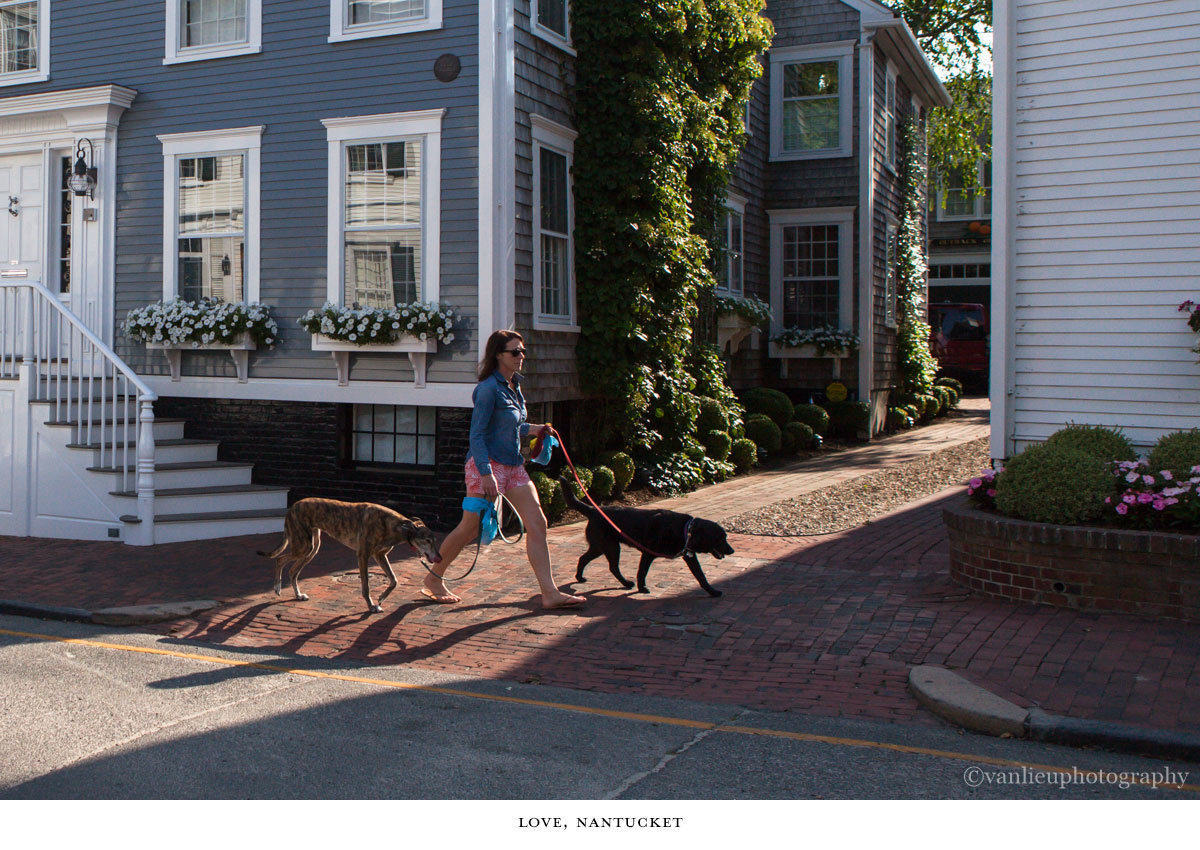 Love, Nantucket  | Town | Van Lieu Photography 7