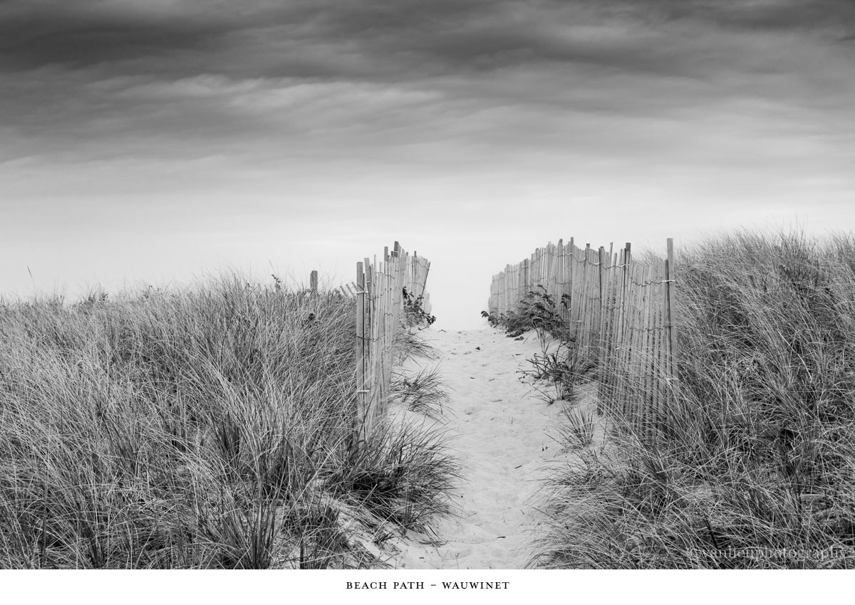 Paths Taken | Nantucket | Beach | Van Lieu Photography 1