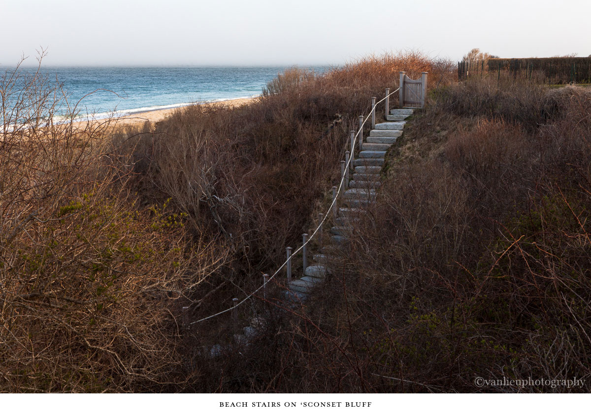 Paths Taken | Nantucket | Beach | Van Lieu Photography 10