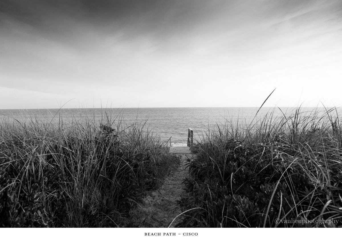Paths Taken | Nantucket | Beach | Van Lieu Photography 18