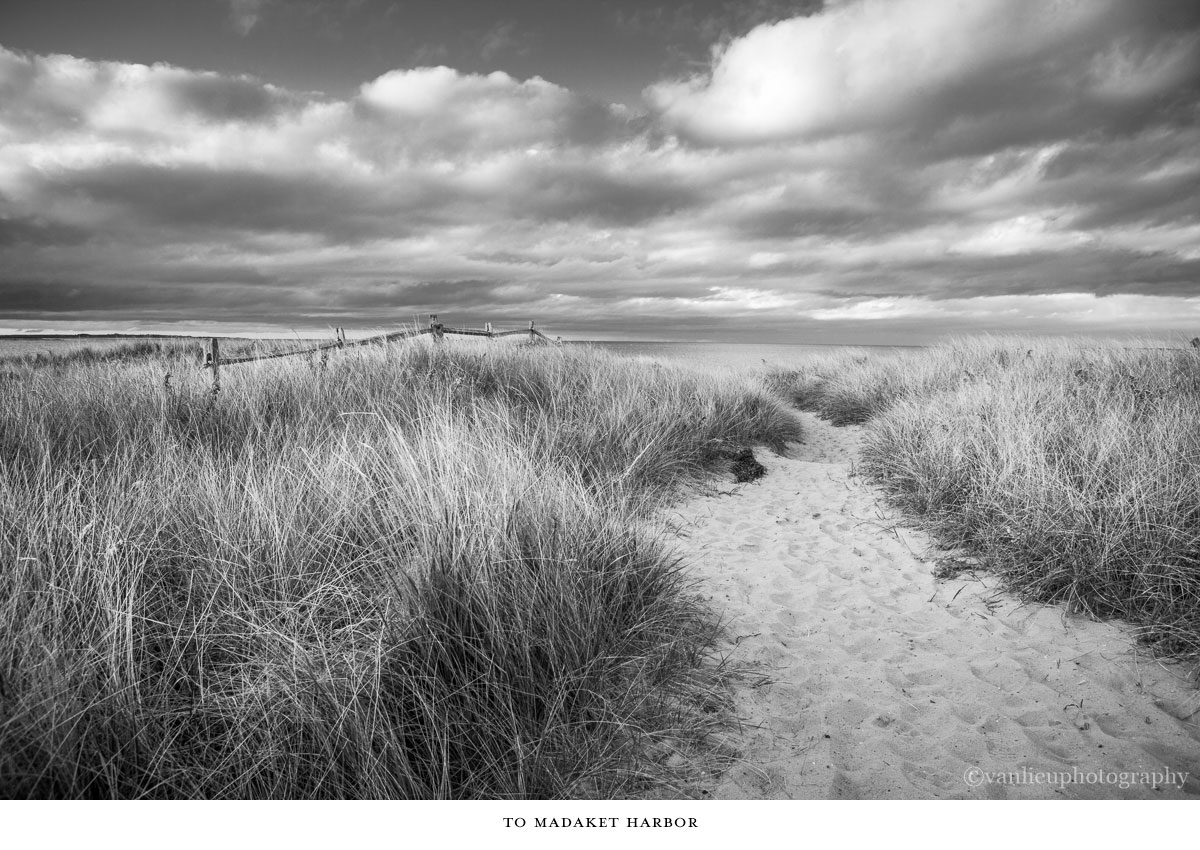 Paths Taken | Nantucket | Beach | Van Lieu Photography 2