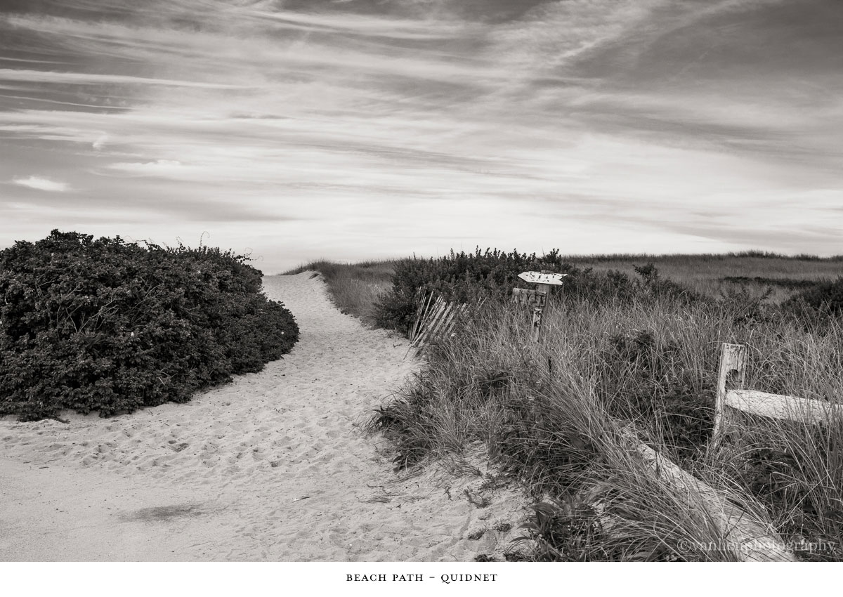 Paths Taken | Nantucket | Beach | Van Lieu Photography 3