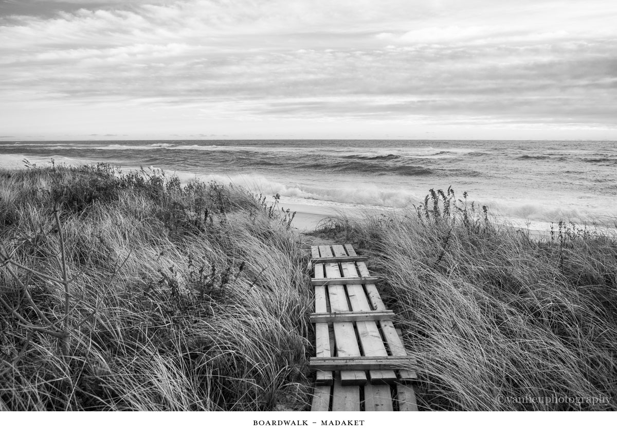 Paths Taken | Nantucket | Beach | Van Lieu Photography 6