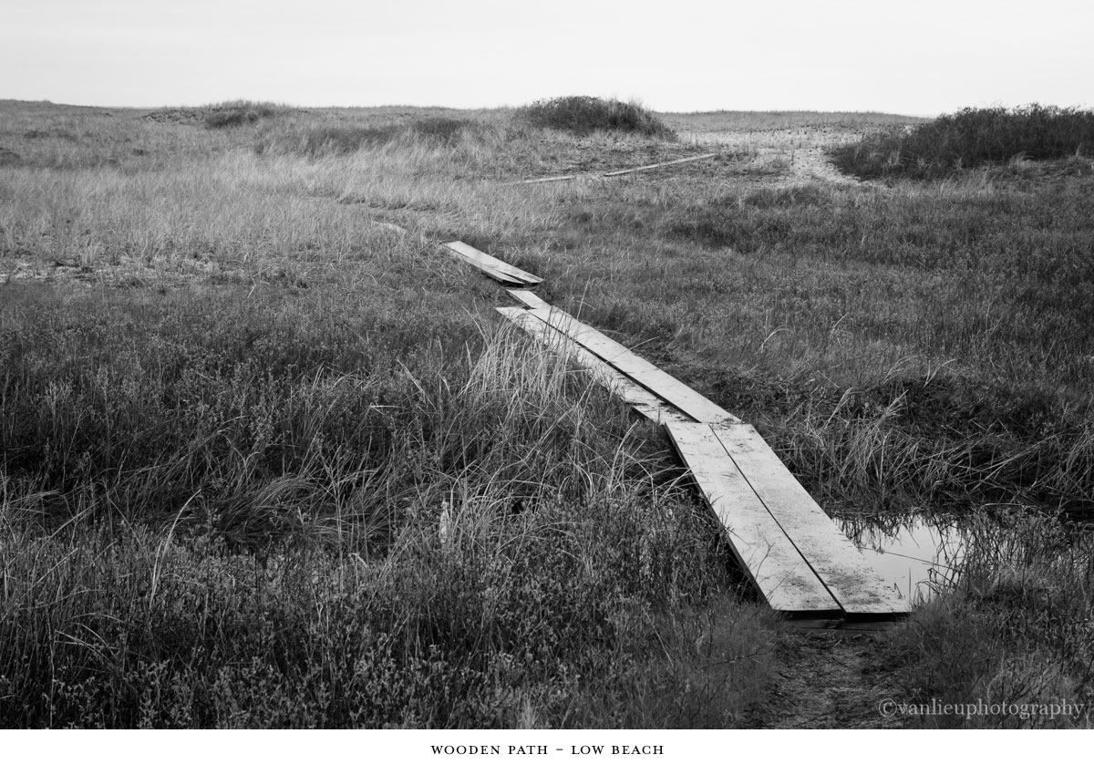 Paths Taken | Nantucket | Beach | Van Lieu Photography 7