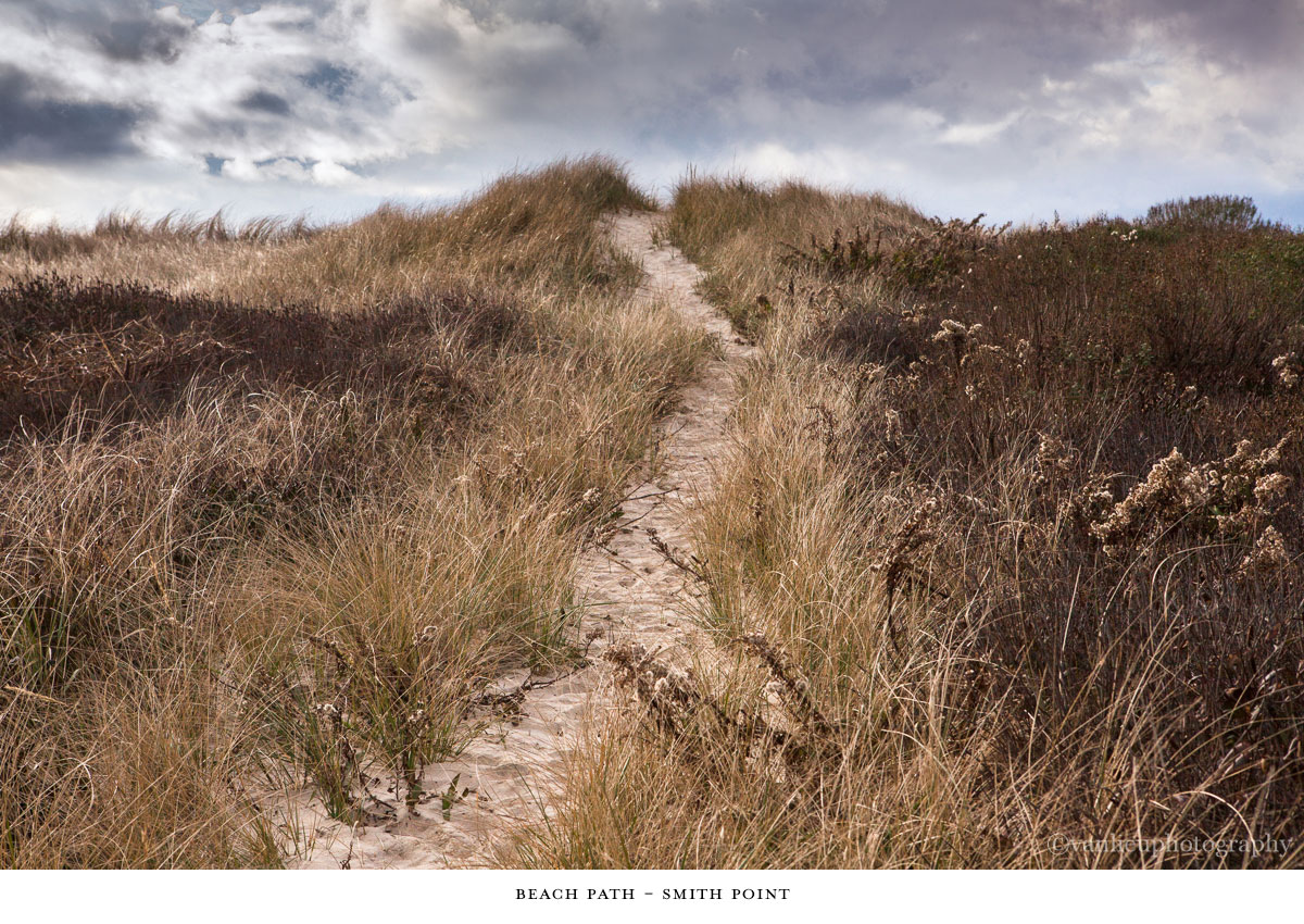Paths Taken | Nantucket | Beach | Van Lieu Photography 9