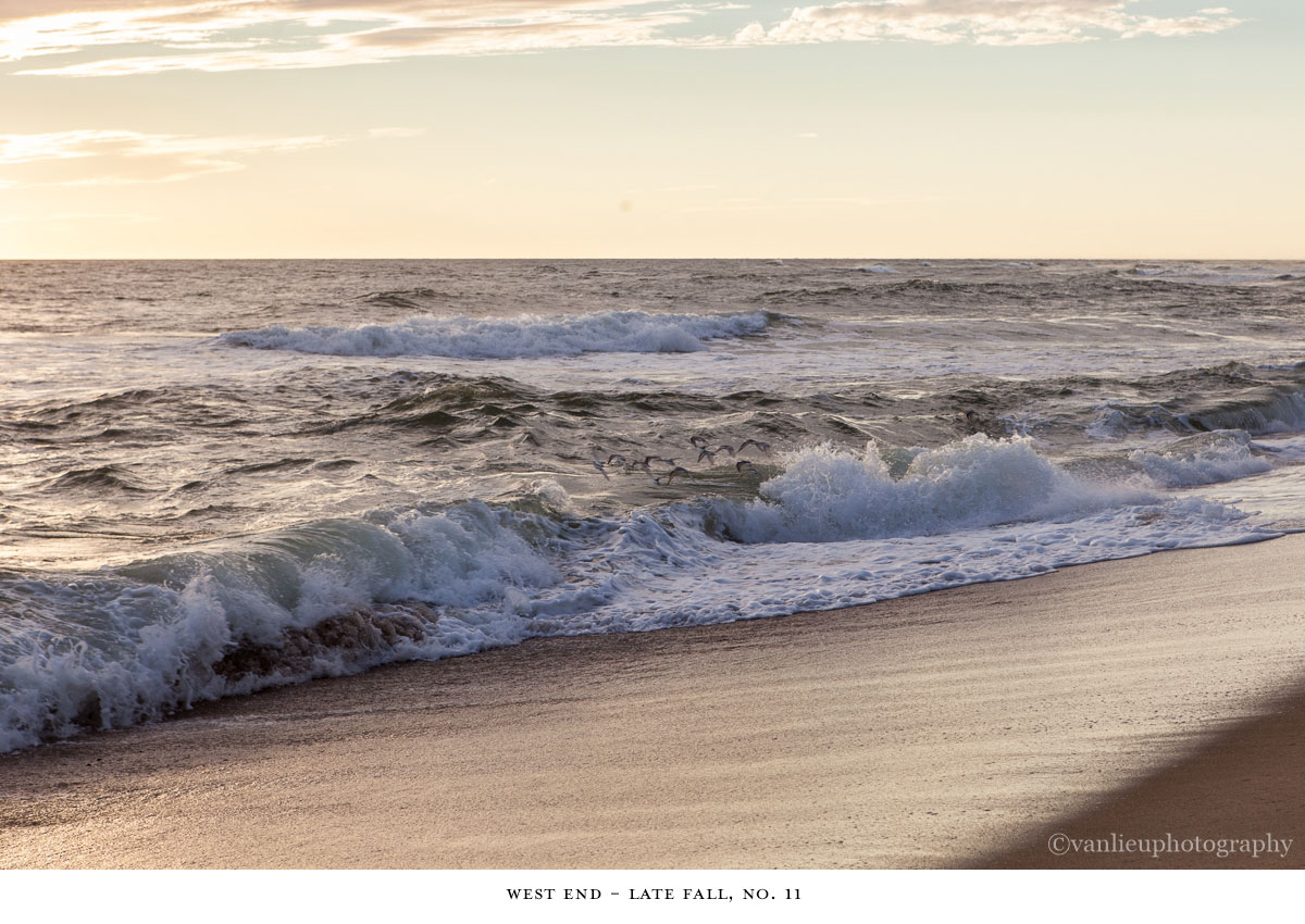 West End| Nantucket | Madaket | Van Lieu Photography 11