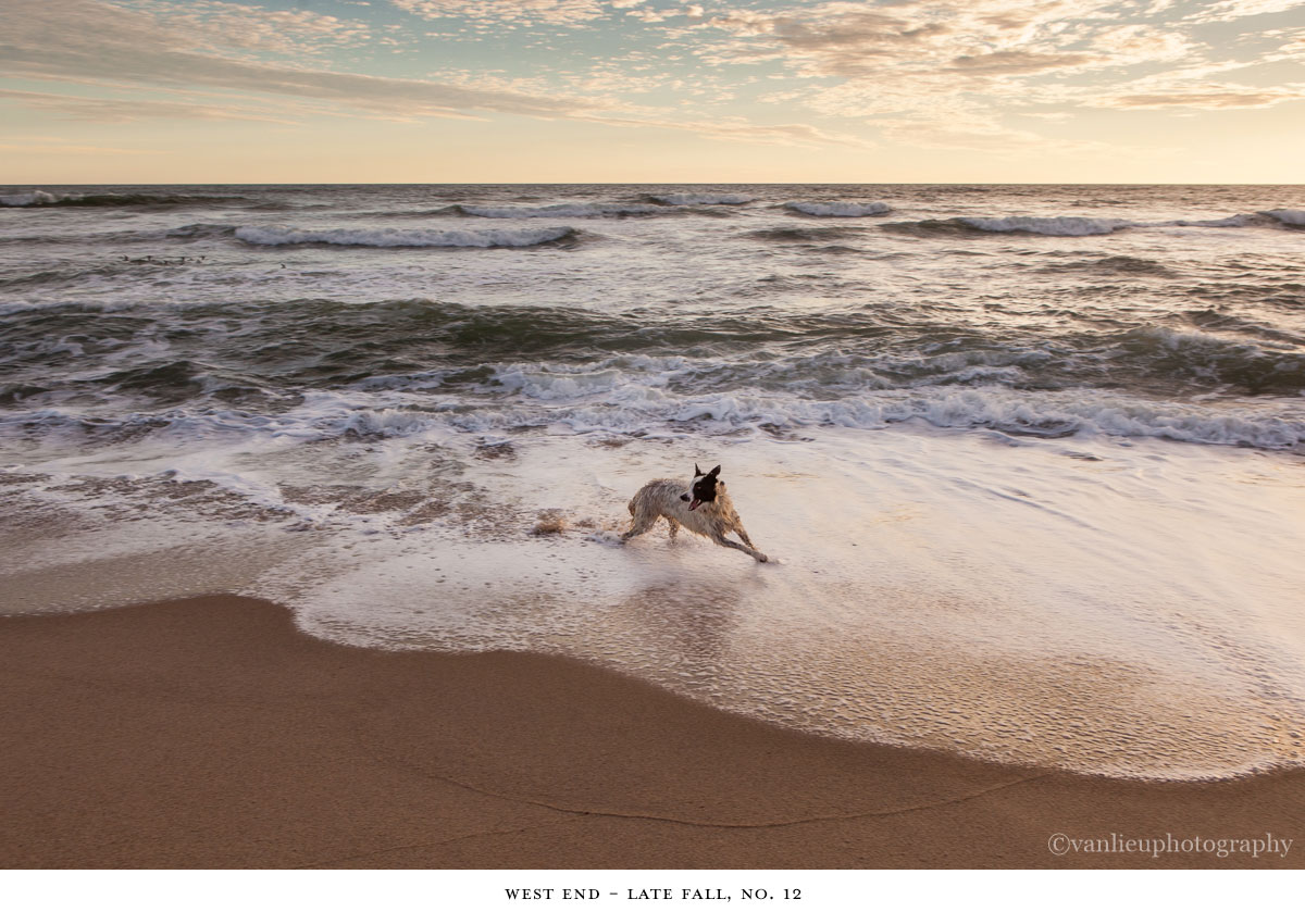 West End| Nantucket | Madaket | Van Lieu Photography 12