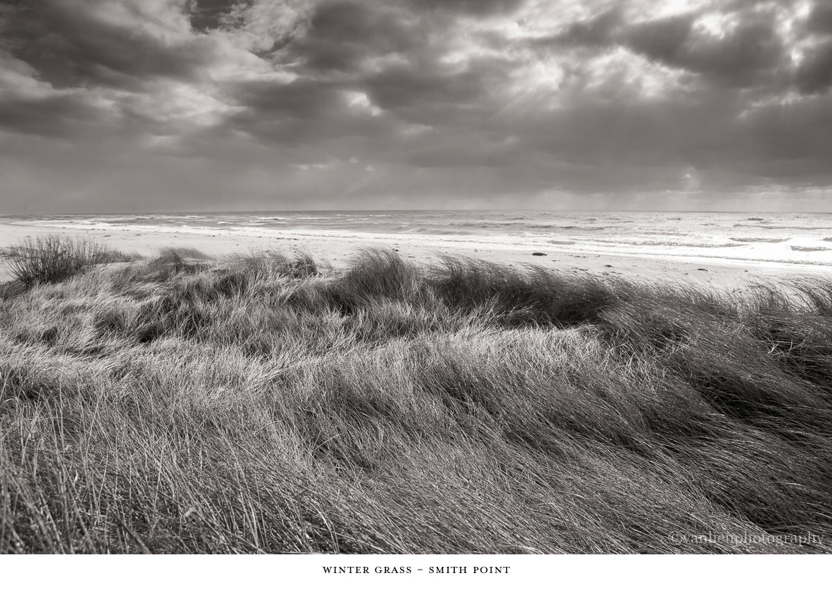 Dunes| Nantucket | Van Lieu Photography 6