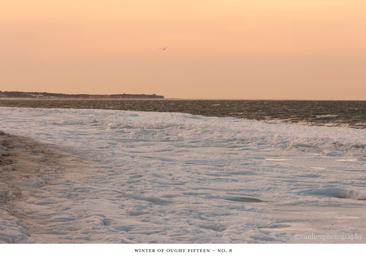 Winter Ought Fifteen | Nantucket | Beach | Van Lieu Photography 8