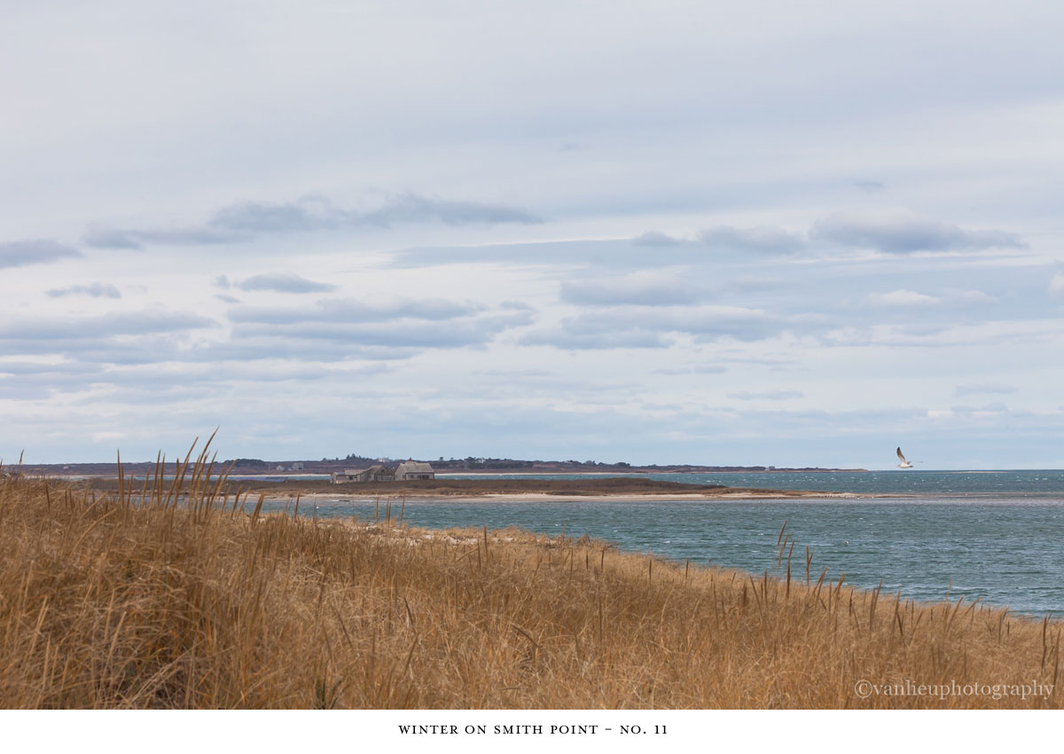 Winter Smith Point| Nantucket | Beach | Van Lieu Photography 11