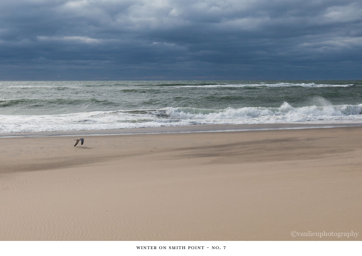 Winter Smith Point| Nantucket | Beach | Van Lieu Photography 7